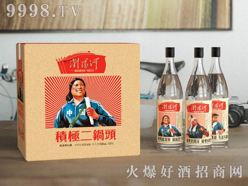 浏阳河酒积极二锅头52°500ml×12瓶