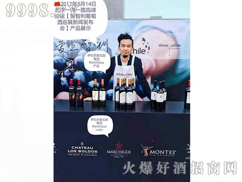 伊拉苏酒高峰论坛产品展示