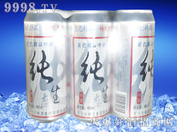 滨海情纯生态啤酒500ml×9