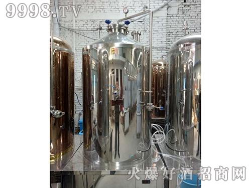 波恩贝尔啤酒发酵罐设备