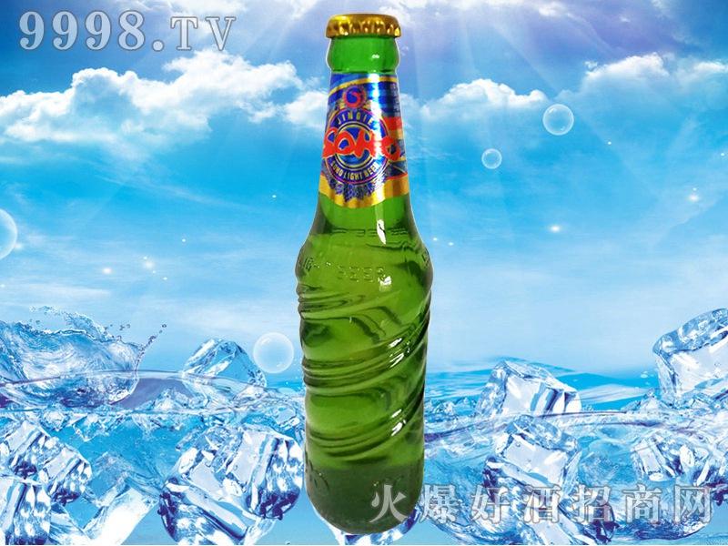 津江苏荷炫酷啤酒300ml