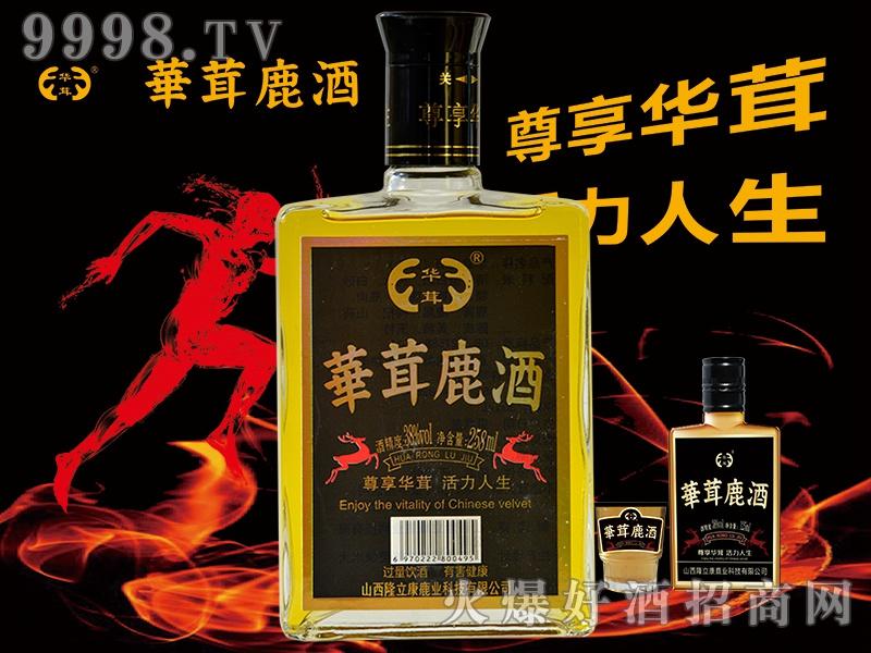 华茸鹿酒黑金刚系列之方瓶258ml-保健酒招商信息