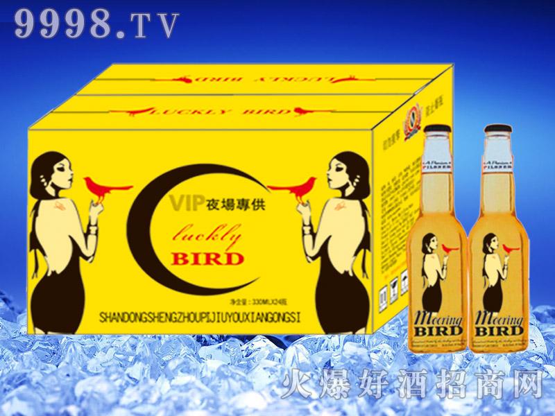红鸟夜场啤酒330ml瓶