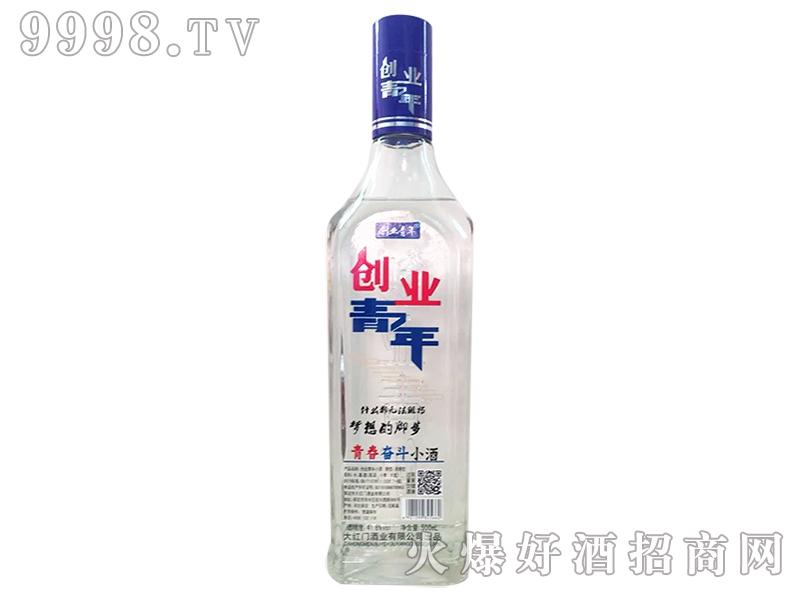 青春奋斗小酒-创业青年41°500ml
