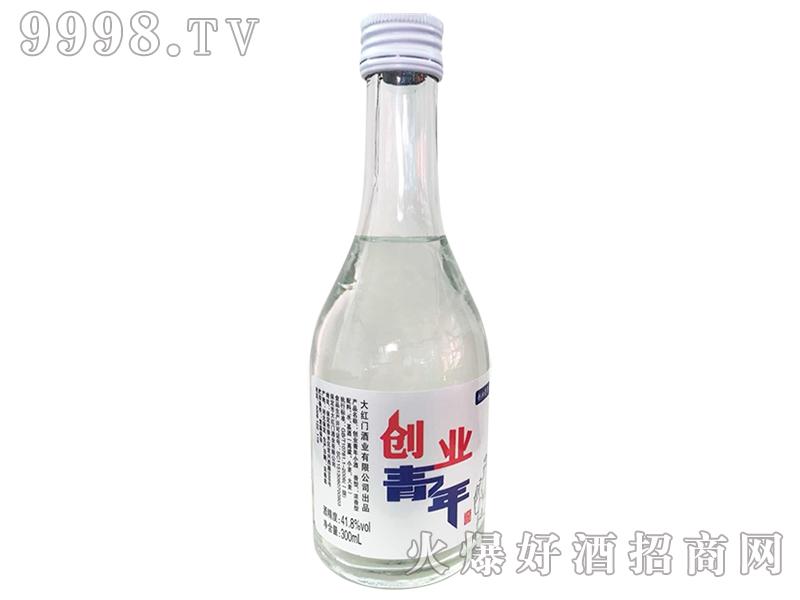 青春奋斗小酒-创业青年41°300ml