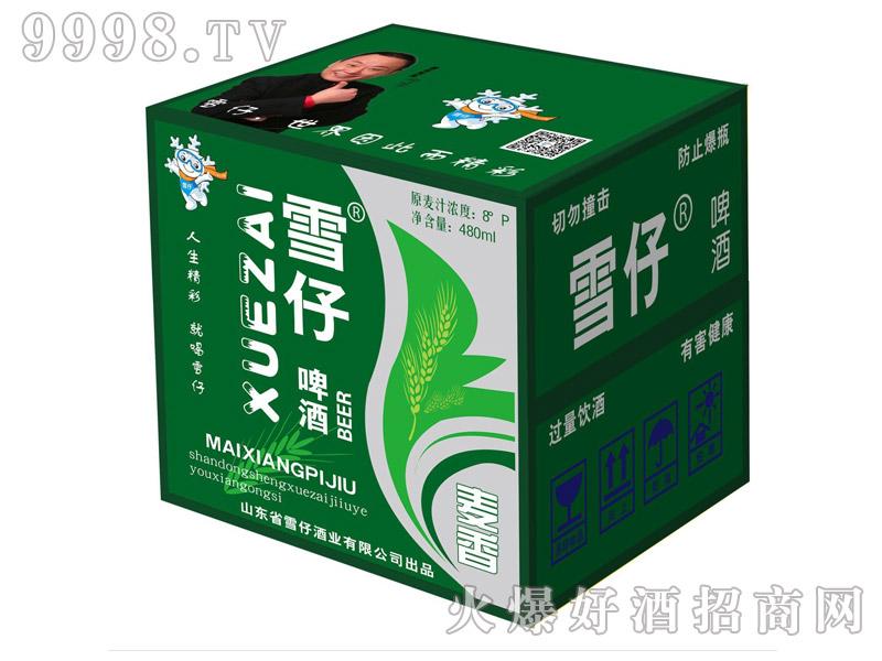 雪仔啤酒480ml(箱)