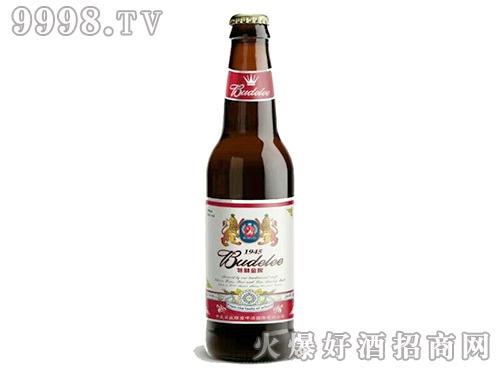 中美百威特制金啤500ml瓶装