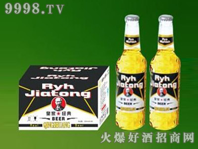 皇家经典夜场啤酒330ml