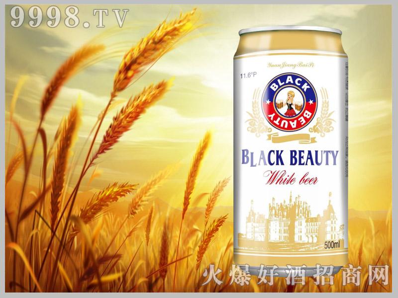 黑美人白啤画册