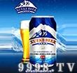 雪客啤酒冰晶易拉罐装500ml