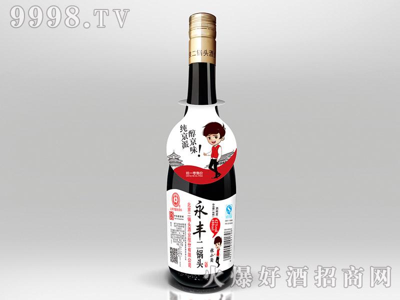 永丰二锅头酒42°480ml