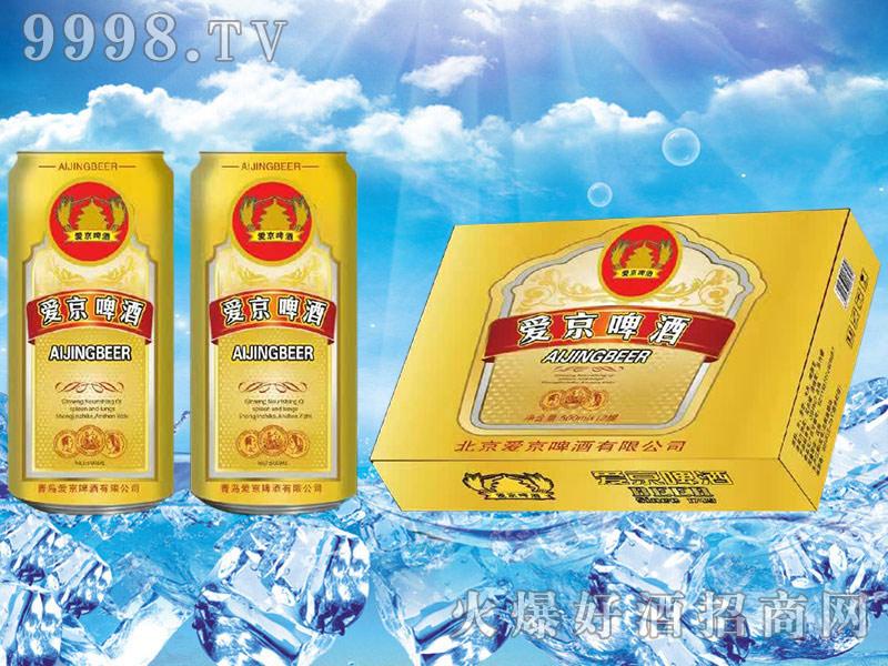 爱京啤酒500mlx12罐