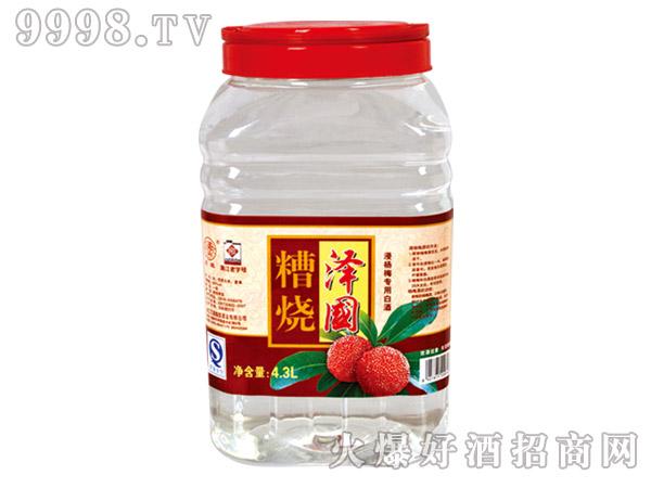 月桂泽国糟烧酒4.3L