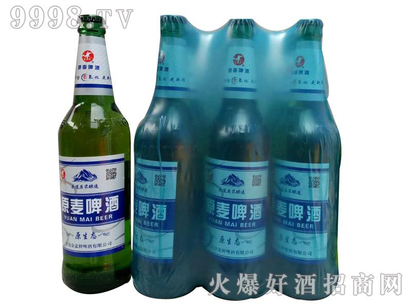 600ml金麦鲜啤酒・原麦