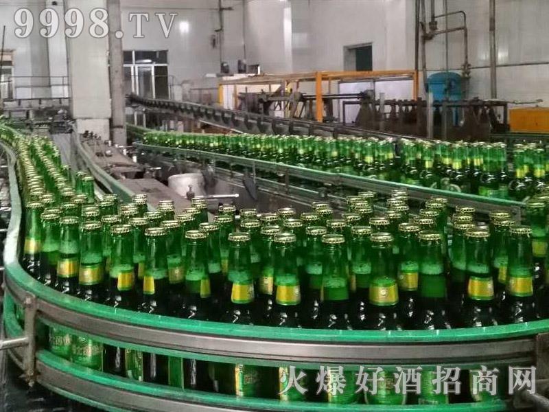 爵士嘉伦绿瓶啤酒生产线