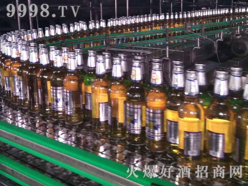 爵士嘉伦黄瓶啤酒生产线