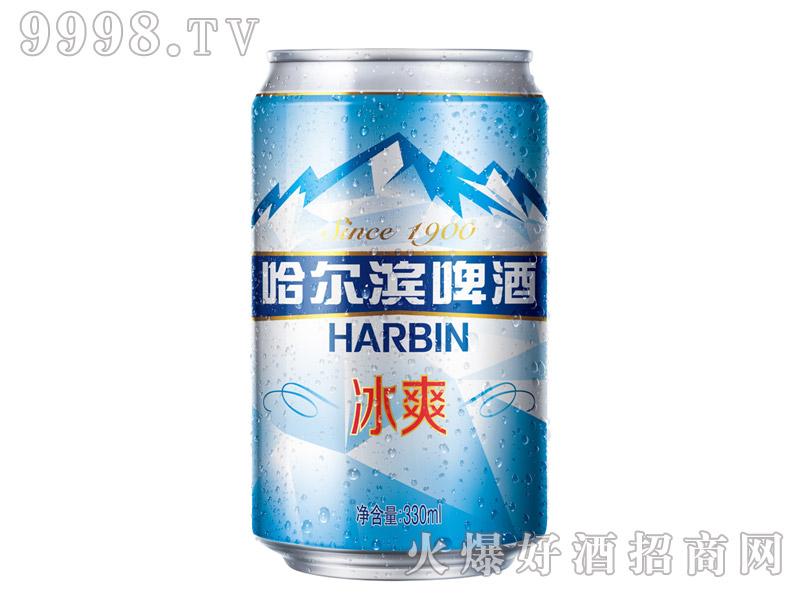 哈尔滨啤酒・冰爽拉罐330ml
