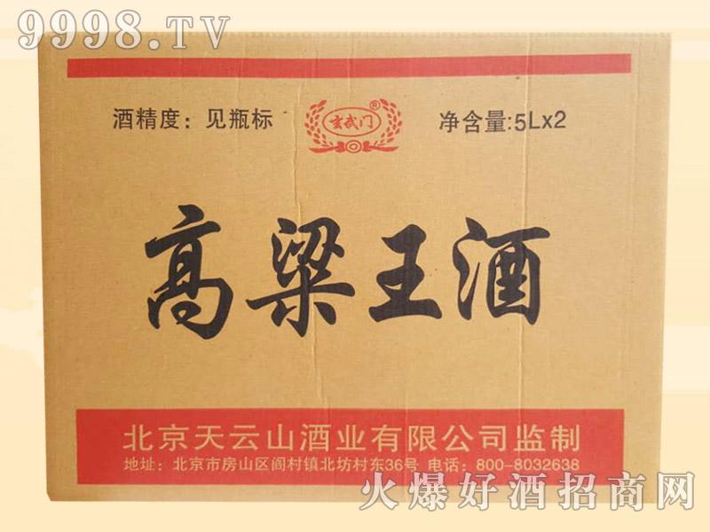 玄武门高粱王酒5Lx2