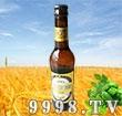 山泽黑啤酒-啤酒招商信息