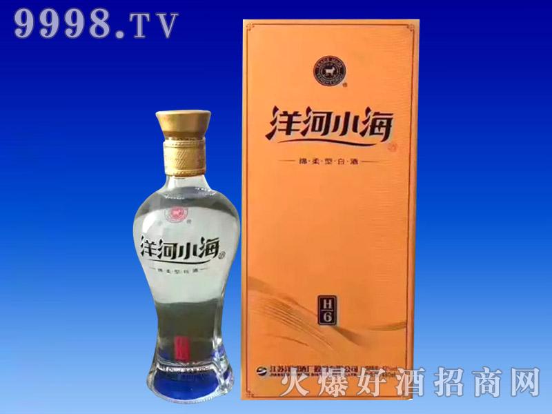 洋河小海-白酒招商信息
