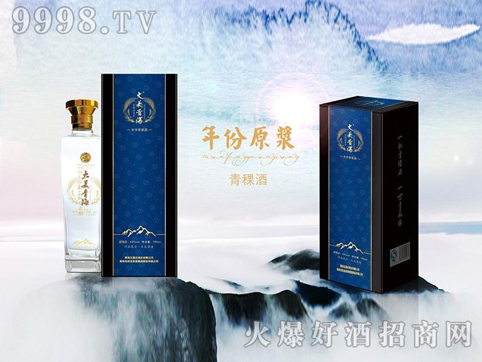 大美青海青稞酒(年份原浆750ML)