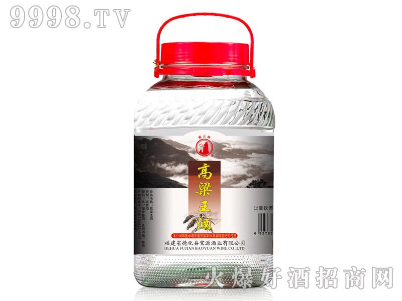 戴云牌・高粱王酒5L