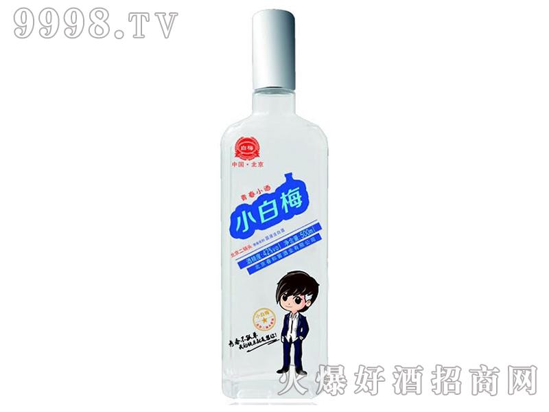 青春小酒小白梅北京二锅头42°500ml