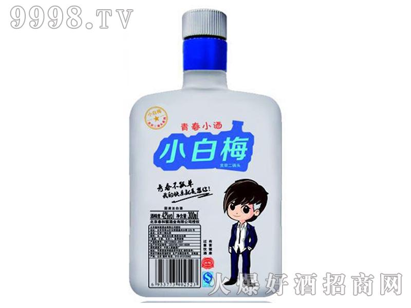 青春小酒小白梅北京二锅头42°300ml