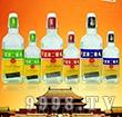 白梅北京二锅头酒杯酒-白酒招商信息