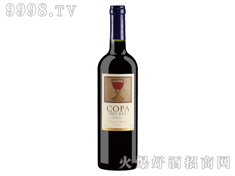 智利圣杯美乐干红葡萄酒