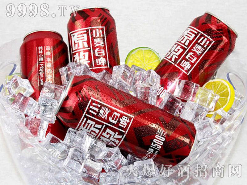 500ML美林小镇千赢国际手机版红罐户外篇-形象篇-(5)