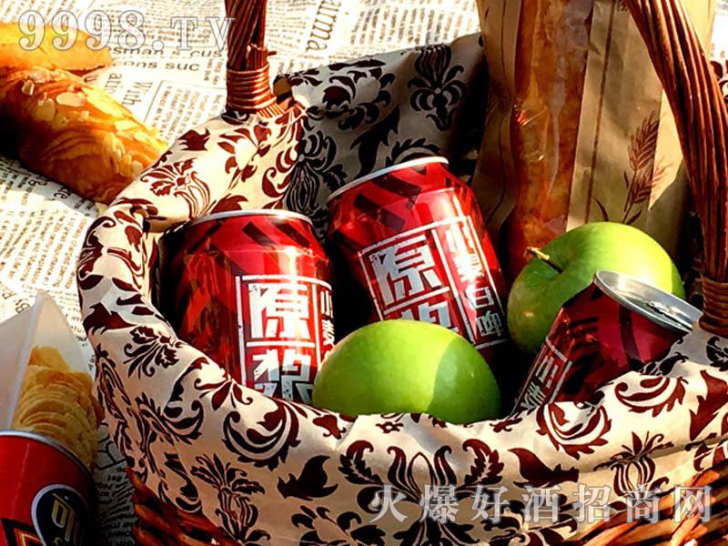 500ML美林小镇啤酒红罐户外篇-户外篇-(5)