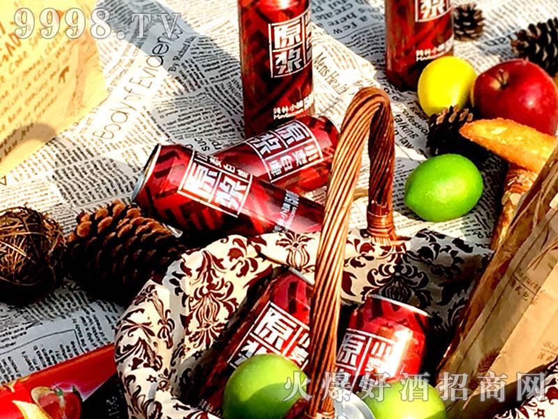 500ML美林小镇千赢国际手机版红罐户外篇-户外篇-(4)