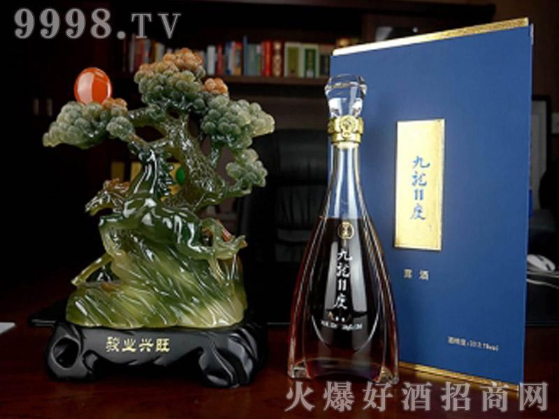 九龙11度-保健酒招商信息