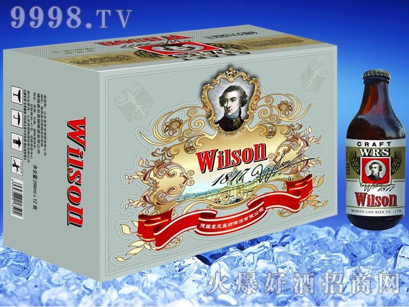 维尔森精酿啤酒13度