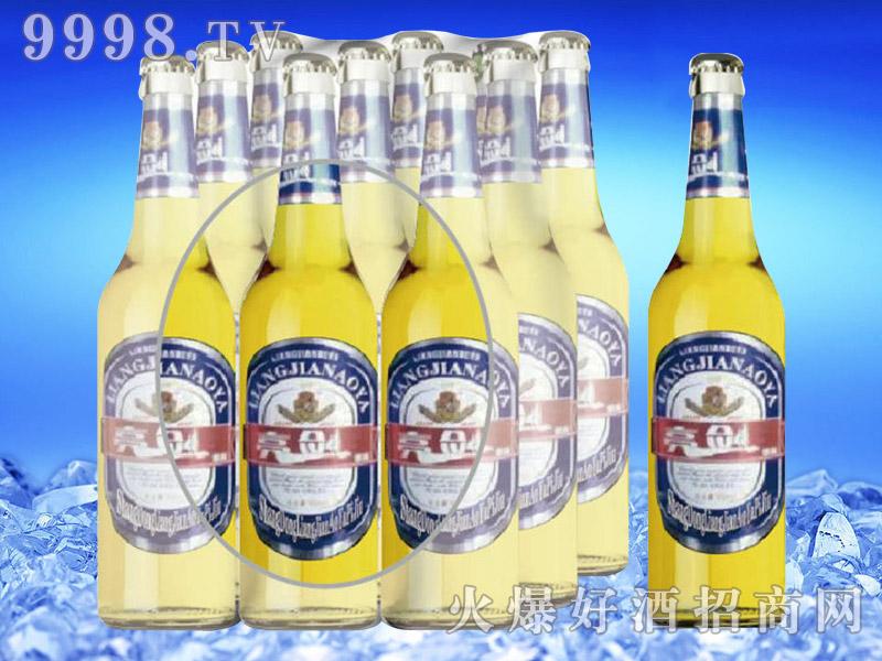 亮剑啤酒500ml×9瓶