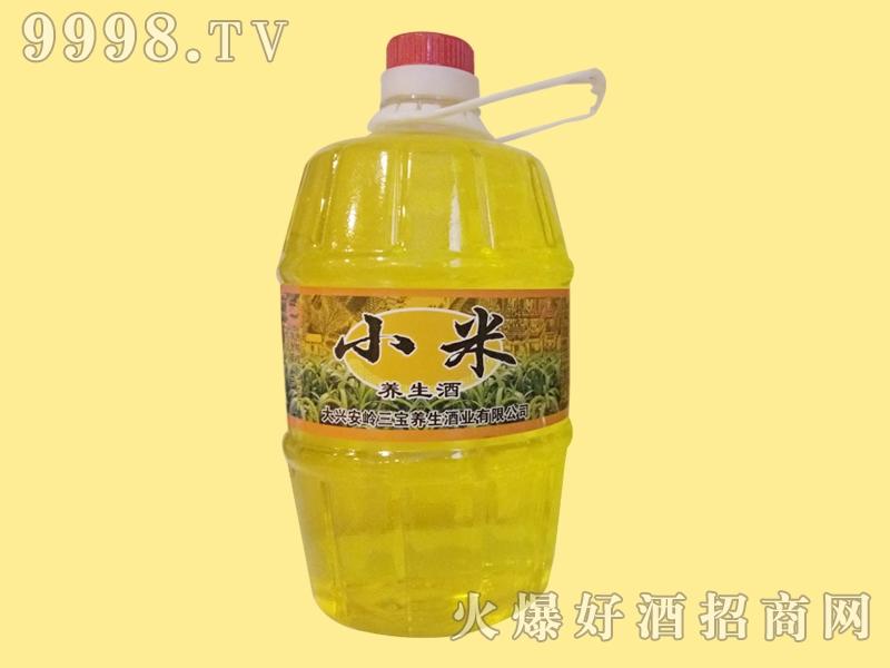 三宝小米养生酒