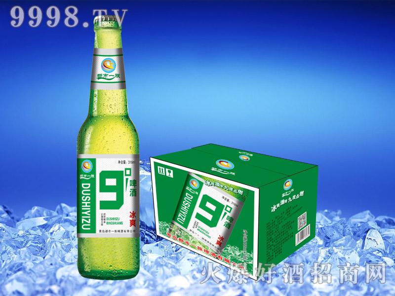 315ML*24 9度冰爽啤酒