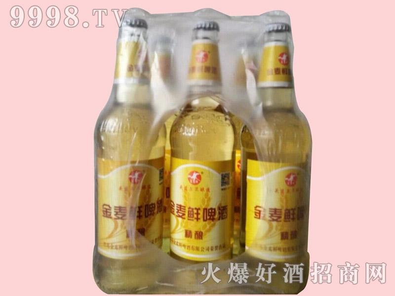 金麦鲜精酿啤酒500ml×9瓶塑包