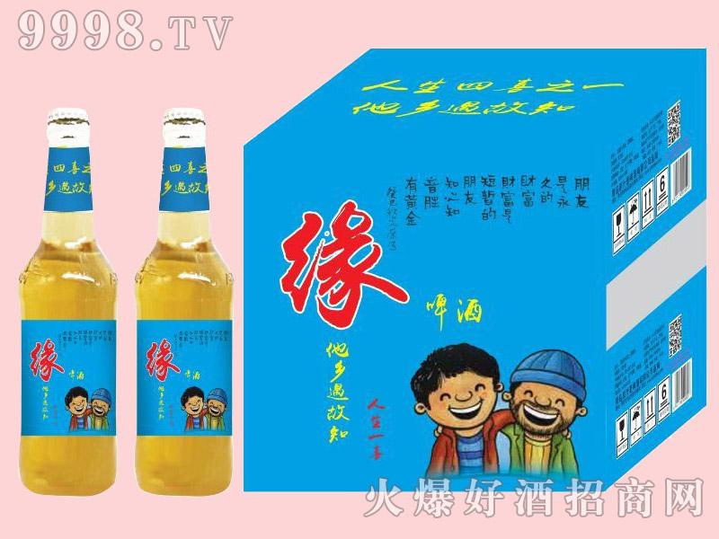 金麦鲜缘啤酒500ml×12瓶