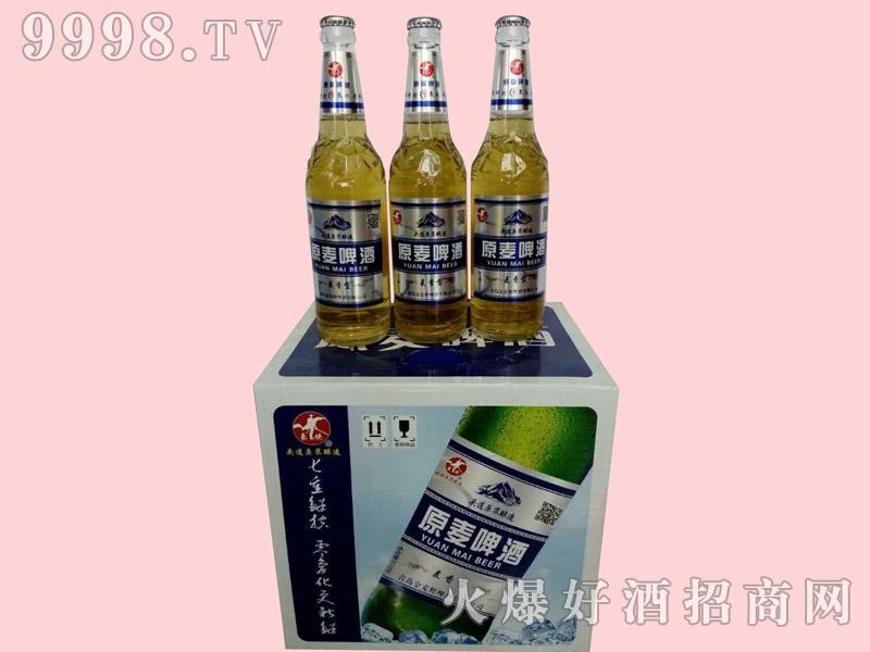 金麦鲜原麦啤酒500ml×12瓶
