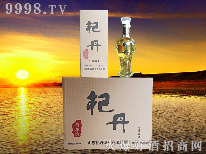 杞丹白金菊花酒38度供菊