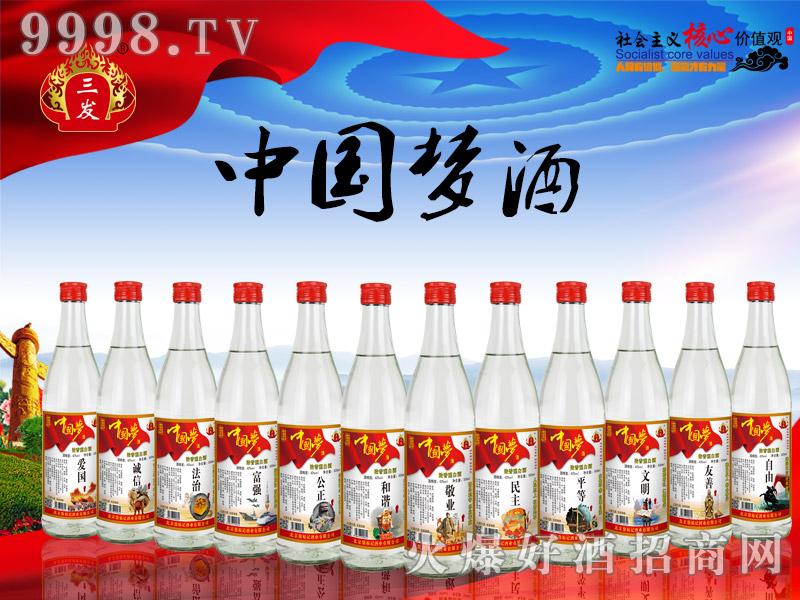 三发中国梦酒光瓶