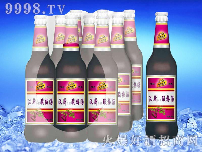 汉斯红橙酸梅汤500ml-亮剑啤酒
