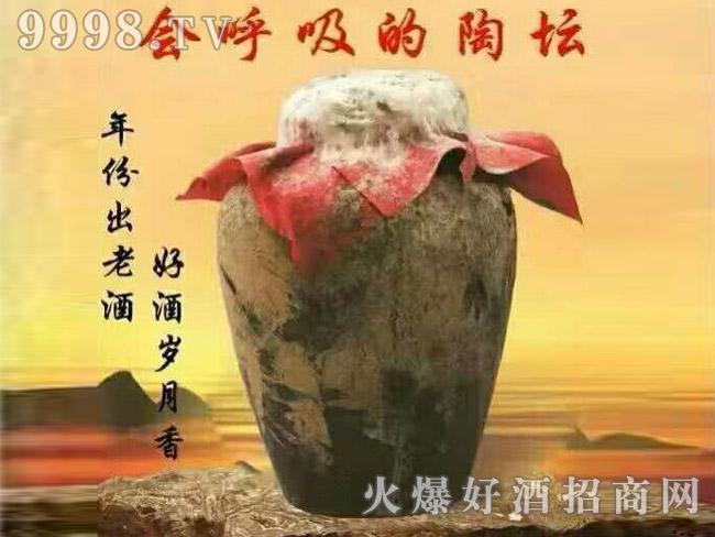 古家百年洞藏老酒(会呼吸的陶坛)
