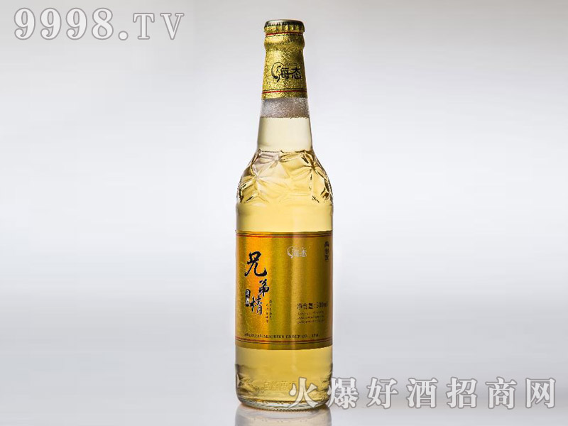 海态兄弟情啤酒500mlX12