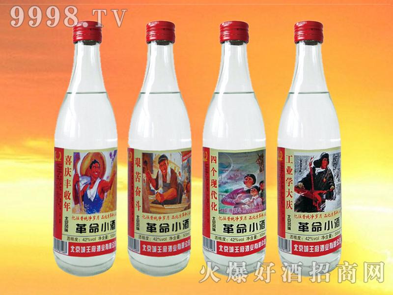 永定桥革命小酒42度500mlx12