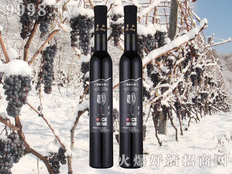 紫桐冰纯冰红葡萄酒