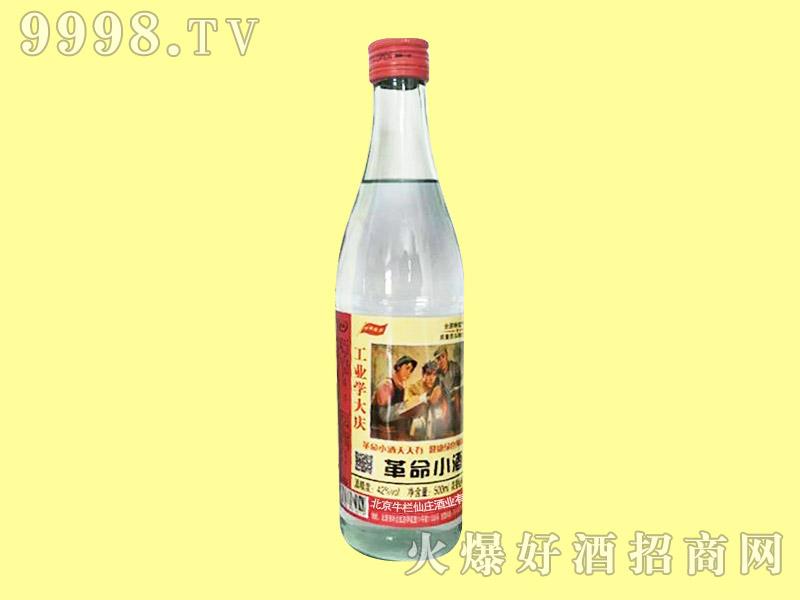 革命小酒42°