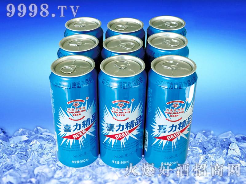 喜力精品啤酒500ml×9罐塑包